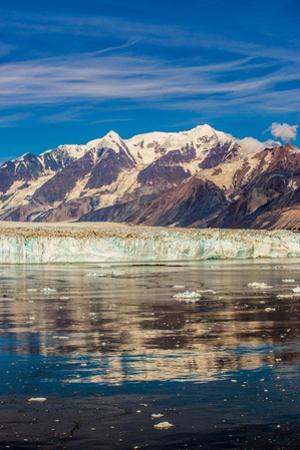 Cruising through Glacier Bay National Park, Alaska, United States of America, North America by Laura Grier