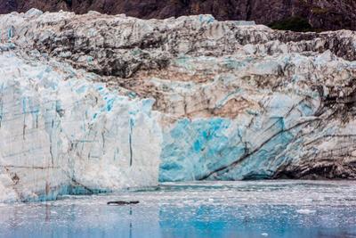 Glacier Bay National Park, viewed from Princess Star Cruise Ship, Alaska, USA, North America by Laura Grier