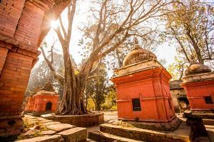 Pashupati Temple tombs, Kathmandu, Nepal, Asia by Laura Grier
