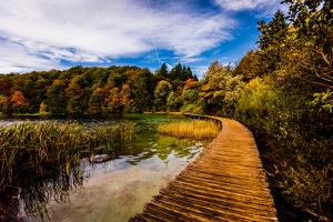 Scenic spot in Plitvice Lakes National Park, UNESCO World Heritage Site, Croatia, Europe by Laura Grier