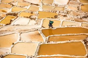 Woman Mining Salt, Salineras De Maras, Maras Salt Flats, Sacred Valley, Peru, South America by Laura Grier