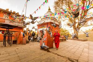 Woman walking and praying with pigeons at the hilltop temple, Bhaktapur, Kathmandu Valley, Nepal, A by Laura Grier