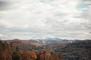 Autumn Hills I by Laura Marshall