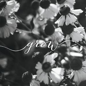 Grow by Laura Marshall
