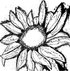 Dreamy Sunflower by Laura Miller