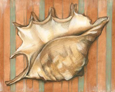 Shell on Stripes II