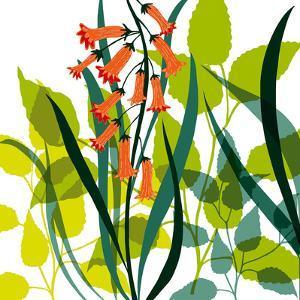 Flower Applique II by Laure Girardin-Vissian