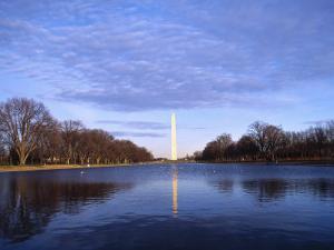 Washington Monument, Wash, DC by Lauree Feldman