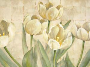 White Tulips on Ivory by Lauren Mckee