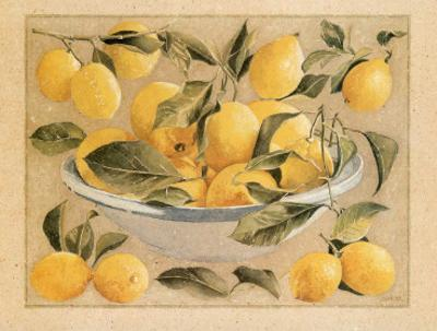 Coupe d'Agrumes, Citrons by Laurence David