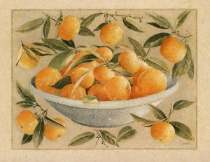 Coupe d'Agrumes, Oranges by Laurence David