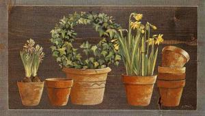 Jonquilles by Laurence David