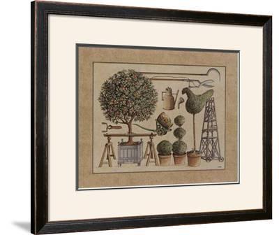 L'Art de Former les Topiaires, l'Oranger by Laurence David