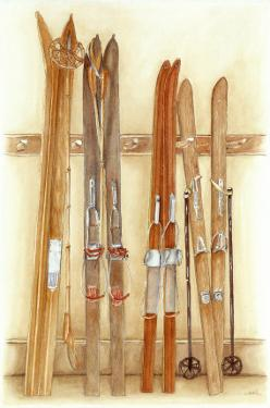 Old Skis II by Laurence David