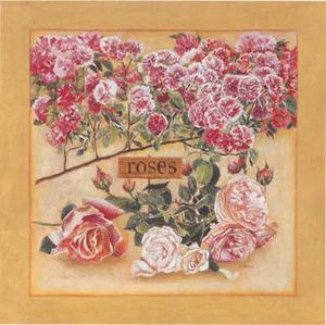 Roses by Laurence David