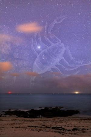 Scorpio In a Night Sky by Laurent Laveder