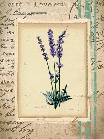 https://imgc.allpostersimages.com/img/posters/lavendar_u-L-PWBQ7V0.jpg?p=0