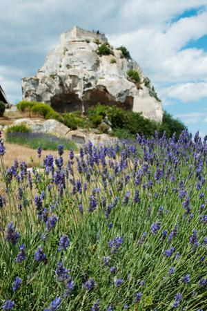 Lavender Field in Front of Ruins of Fortress on a Rock, Les Baux-De-Provence, Bouches-Du-Rhone