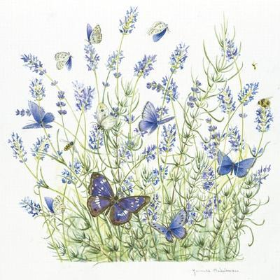 https://imgc.allpostersimages.com/img/posters/lavender_u-L-Q1CAASE0.jpg?artPerspective=n
