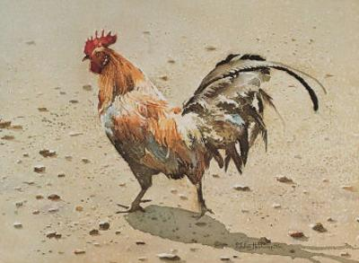 Banty Rooster by LaVere Hutchings