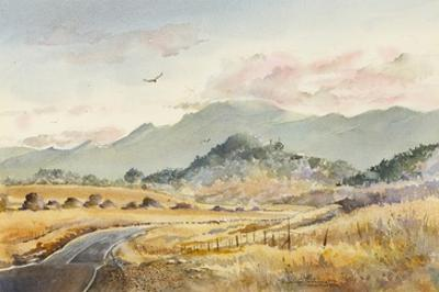 Jacksonville Road by LaVere Hutchings