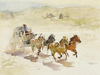 Pursuit by LaVere Hutchings