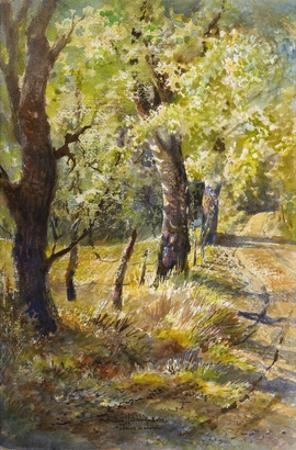 Spring at Dogtown by LaVere Hutchings