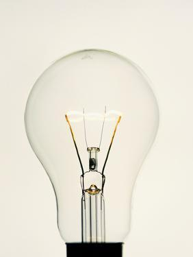 Electric Light Bulb by Lawrence Lawry