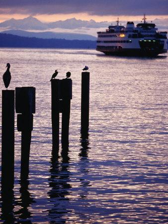 Wa State Ferry Coming in to Dock, Seattle, Washington, USA