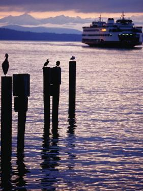 Wa State Ferry Coming in to Dock, Seattle, Washington, USA by Lawrence Worcester