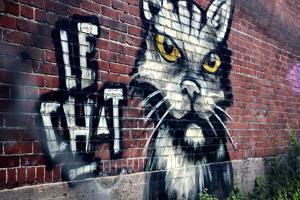 Le Chat Graffiti Montreal Canada