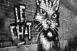 Le Chat Graffiti