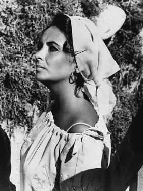 Le Chevalier des Sables THE SANDPIPER by Vincente Minnelli with Elizabeth Taylor, 1965 (b/w photo)