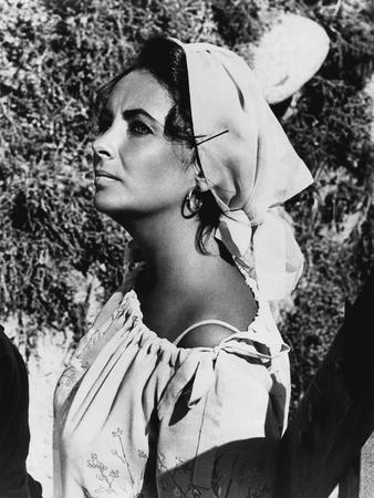 https://imgc.allpostersimages.com/img/posters/le-chevalier-des-sables-the-sandpiper-by-vincente-minnelli-with-elizabeth-taylor-1965-b-w-photo_u-L-Q1C1VUI0.jpg?artPerspective=n