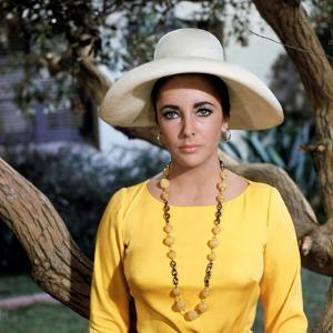 Le Chevalier des Sables THE SANDPIPER by Vincente Minnelli with Elizabeth Taylor, 1965 (photo)