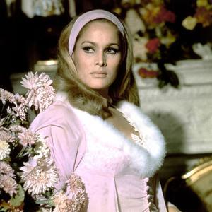 Le crepuscule des aigles (The Blue Max) by JohnGuillermin with Ursula Andress, 1966 (photo)
