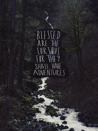 Curious Adventures