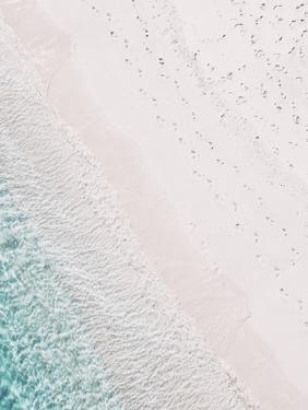 Rosy Footprints by Leah Straatsma