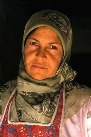https://imgc.allpostersimages.com/img/posters/lebanese-woman-bekaa-lebanon_u-L-Q1GYJI00.jpg?artPerspective=n