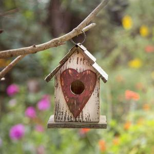 Bird House - Square by Lebens Art