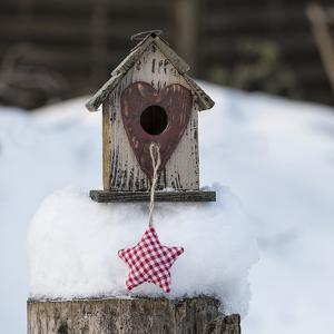 Bird House Winter - Square by Lebens Art