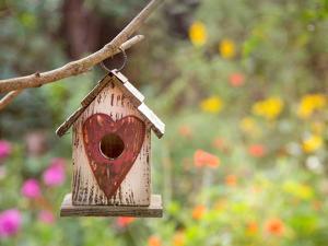 Bird House by Lebens Art