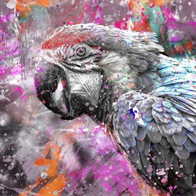 Crazy Parrot - Square by Lebens Art