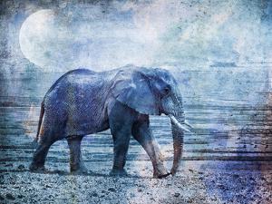 Elephant 4 by Lebens Art