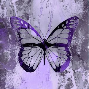 Fancy Butterfly by Lebens Art