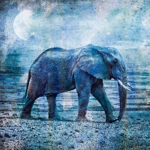 Lonely Elephant by Lebens Art