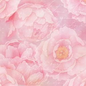 Soft Pink Rose Watercolor - Square by Lebens Art