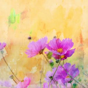 Summer Flower 3 - Square by Lebens Art