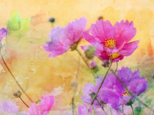 Summer Flower 3 by Lebens Art