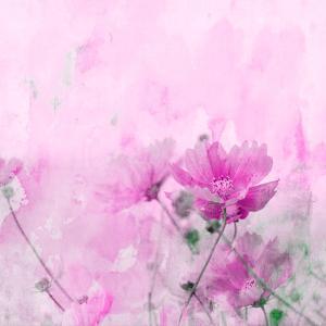 Summer Flower 4 - Square by Lebens Art